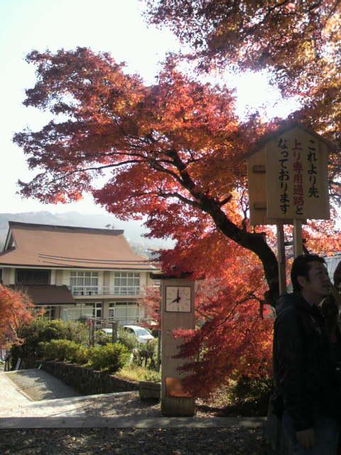 紅葉が綺麗です_c0124828_8324826.jpg