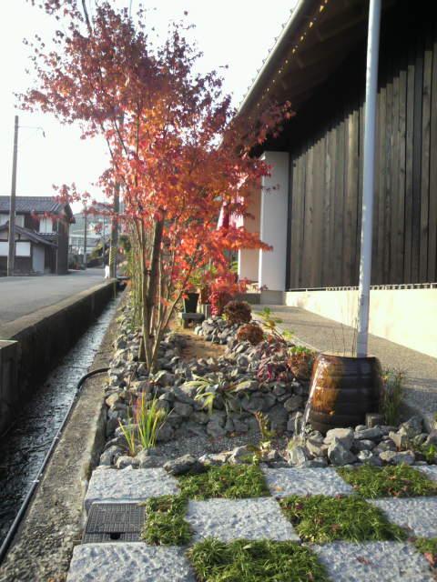 紅葉が綺麗です_c0124828_833993.jpg