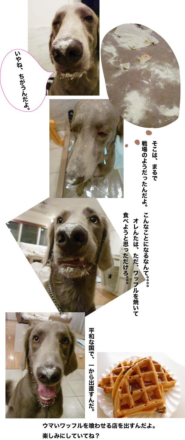 f0100660_15485194.jpg