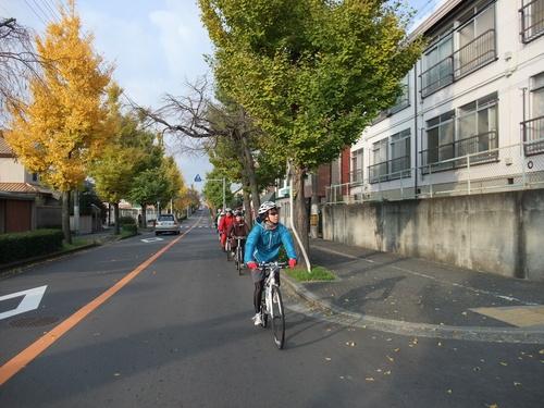 秋のサイクリング~八幡市・流れ橋 往復75km~_d0174462_0445942.jpg