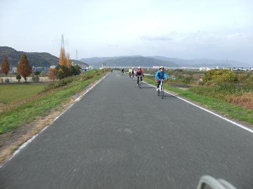 秋のサイクリング~八幡市・流れ橋 往復75km~_d0174462_054152.jpg