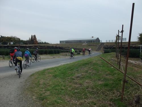 秋のサイクリング~八幡市・流れ橋 往復75km~_d0174462_132756.jpg
