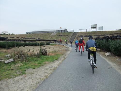 秋のサイクリング~八幡市・流れ橋 往復75km~_d0174462_134487.jpg