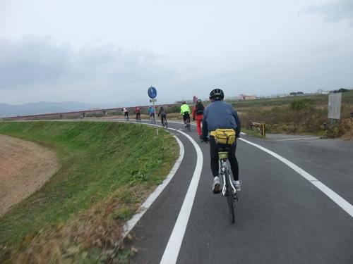 秋のサイクリング~八幡市・流れ橋 往復75km~_d0174462_153028.jpg