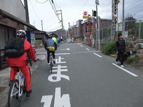 秋のサイクリング~八幡市・流れ橋 往復75km~_d0174462_185491.jpg