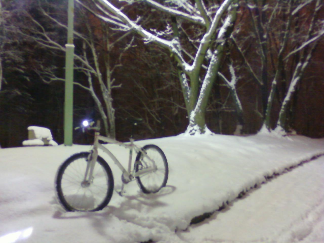 雪です、、雪です!_d0197762_9252960.jpg