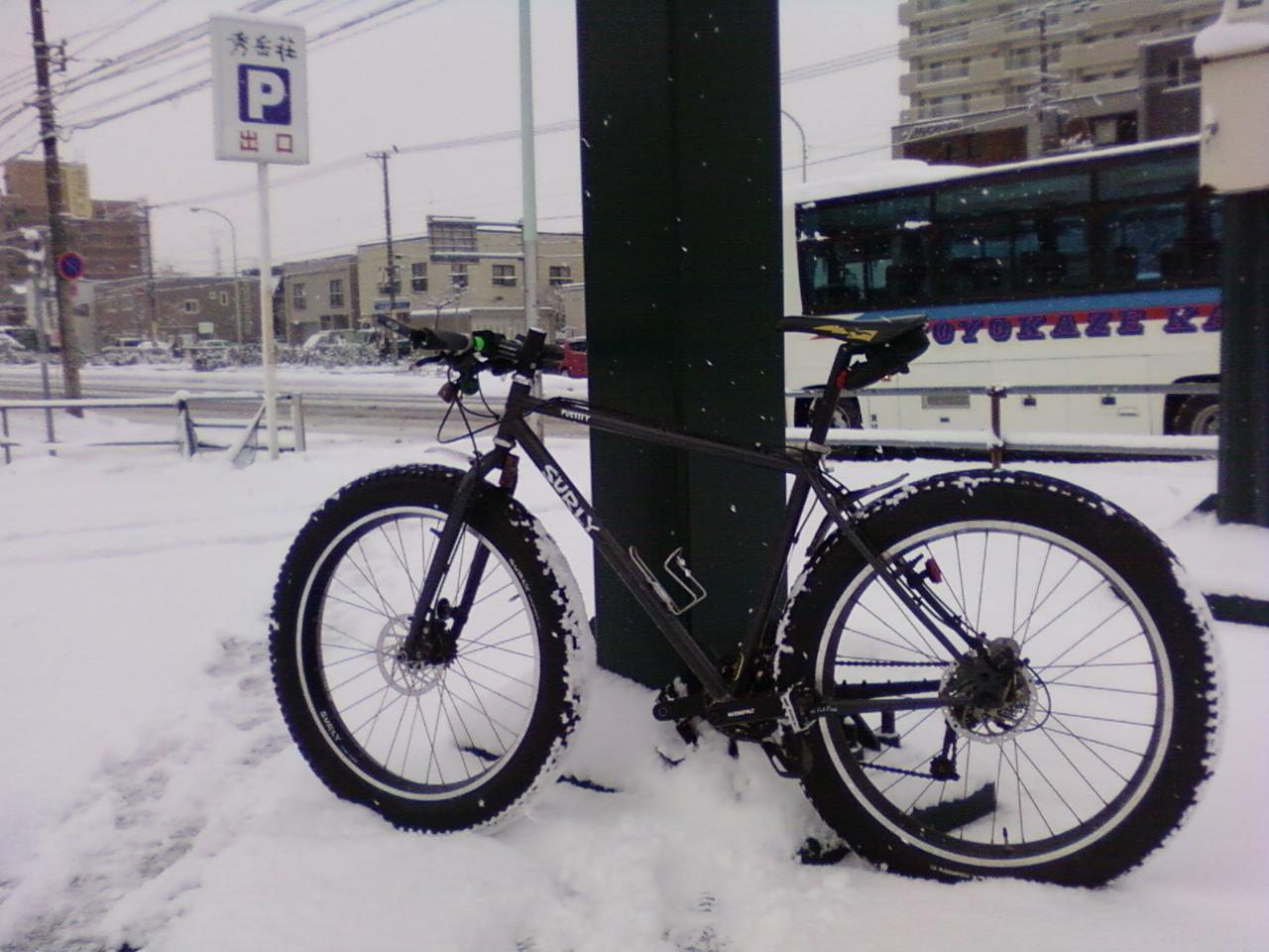 雪です、、雪です!_d0197762_928055.jpg