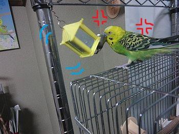 f0196665_0151220.jpg