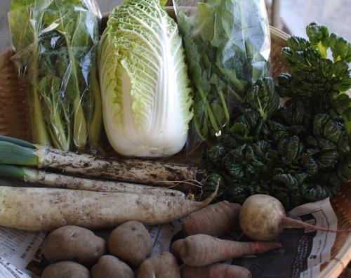 野菜セット不定期便 No.24-水 の発送_c0110869_21124750.jpg