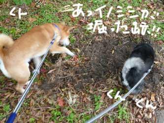 平蔵レポ_b0057675_2354419.jpg