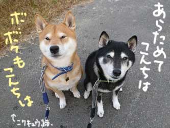 平蔵レポ_b0057675_2354534.jpg