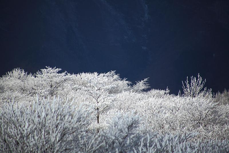 寺沢高原の様子…。_f0075075_19541840.jpg