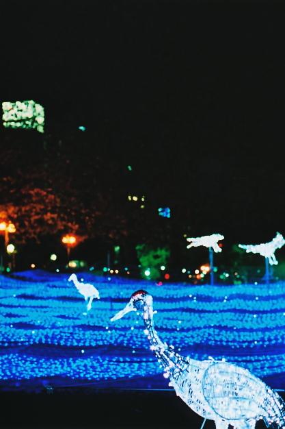 blue light river 2_e0199776_20225215.jpg