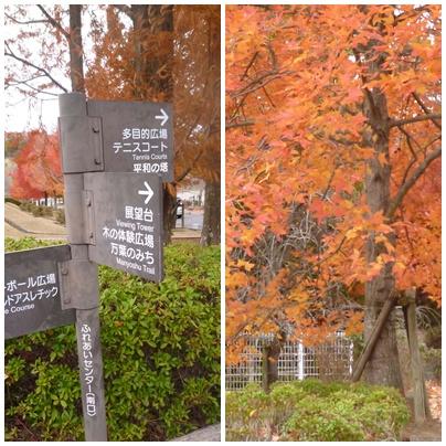 生駒山麓公園_d0078486_19185632.jpg