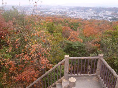 生駒山麓公園_d0078486_2121873.jpg