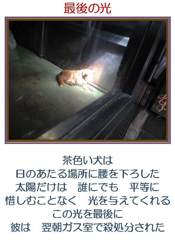 b0181097_17554287.jpg