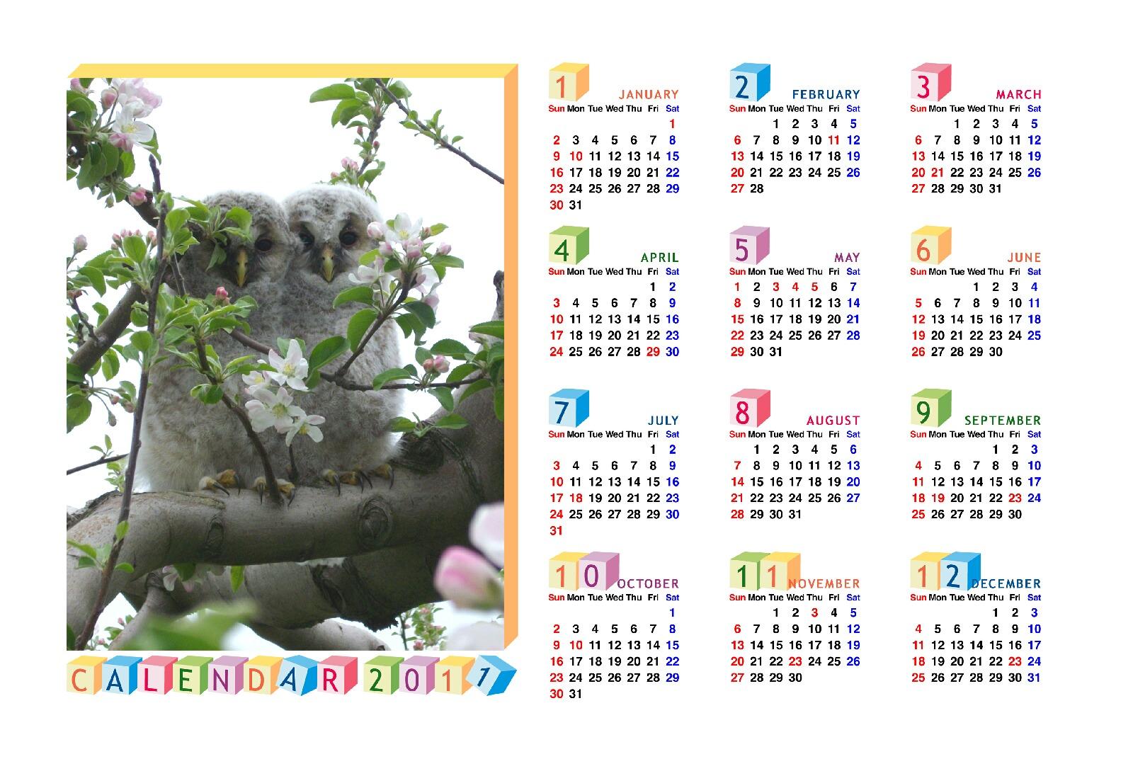 カレンダー カレンダー 1年 : 2011年 カレンダー壁紙 : 2011年 ...