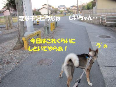 f0143123_20384052.jpg
