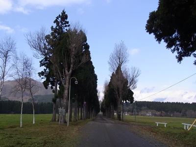 トラピスト修道院に続く道
