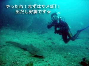念願のピピ島オーバーナイト♪_f0144385_0432339.jpg