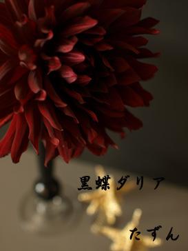 結婚記念日♪  #14_d0144095_23331631.jpg