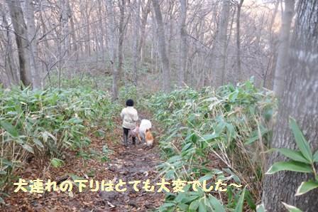 f0212597_13492010.jpg