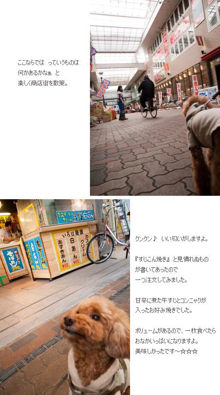 f0228697_0474622.jpg
