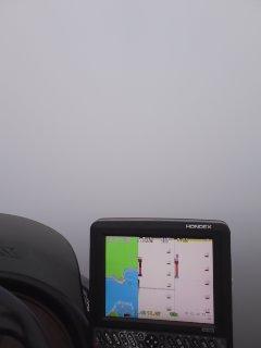 凄い霧…。_e0100021_734232.jpg