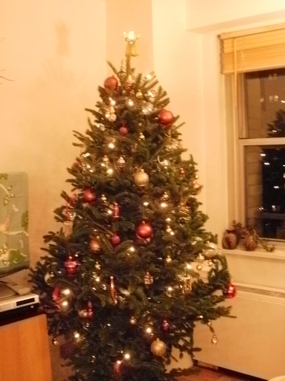 クリスマスツリーを飾りました。_f0095325_14431894.jpg