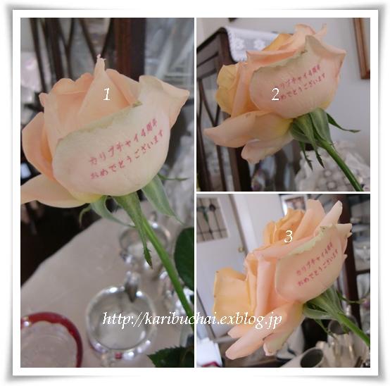 印字された薔薇…その後!_c0079828_12113354.jpg