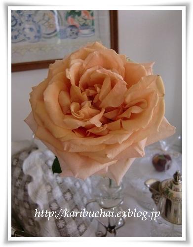 印字された薔薇…その後!_c0079828_128576.jpg