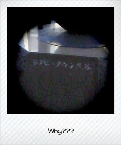 b0170134_1985712.jpg