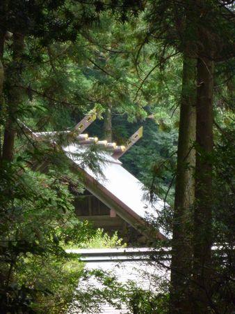 高倉神社(2)弥生の風景そのままに・伊賀彦は水銀産出の国から来て、ここに留まった_c0222861_15191217.jpg
