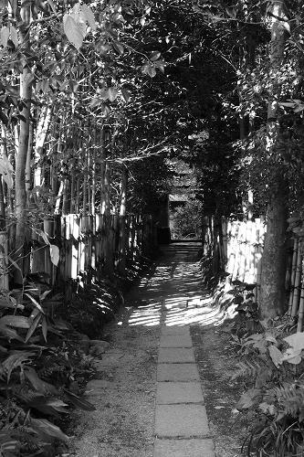 京都 厭離庵_c0196076_13389.jpg