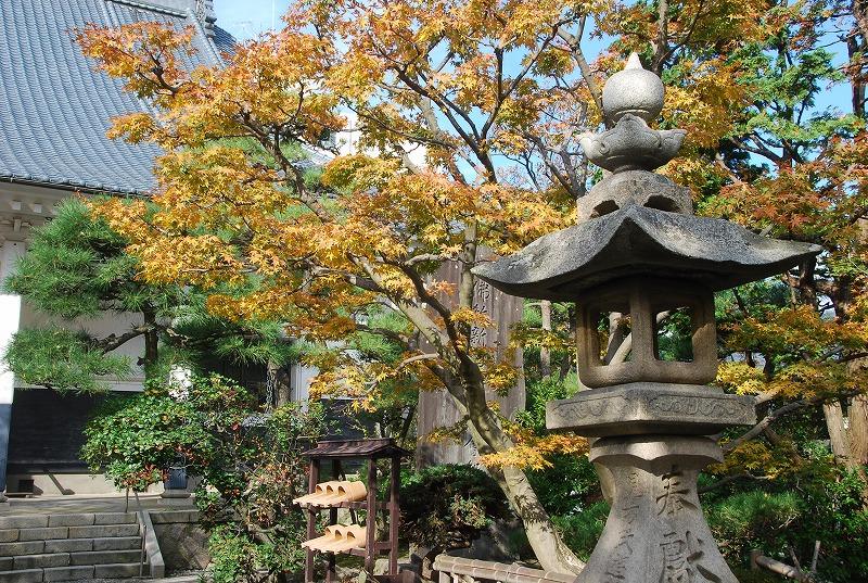 秋の新潟③_c0187781_11303196.jpg