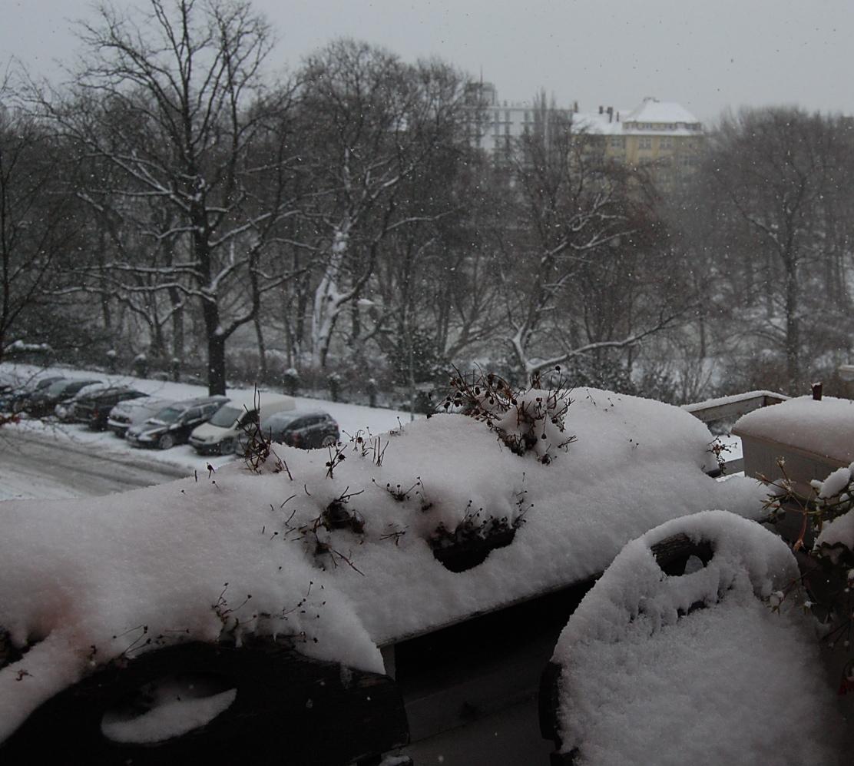 ドイツの歴史上一番寒い12月1日でした。_c0180686_19393319.jpg