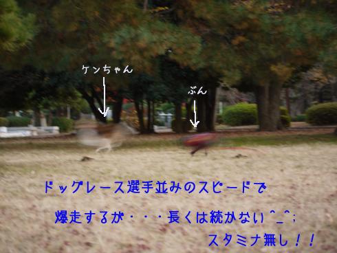b0134197_15182627.jpg