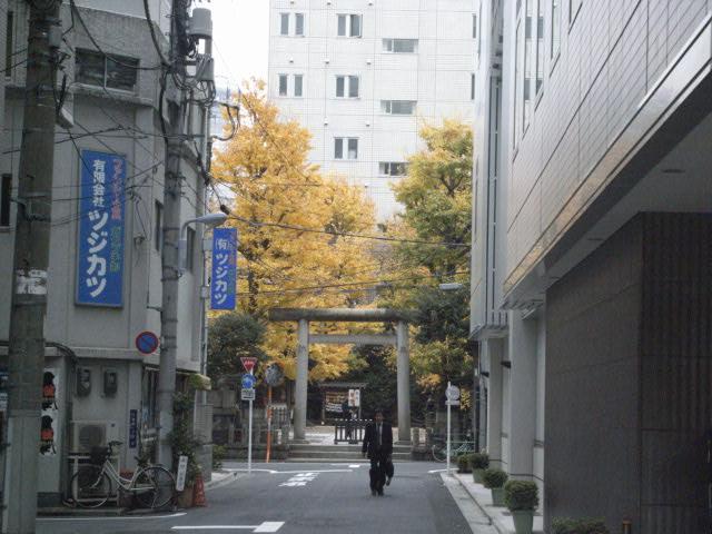 秋の色_e0116211_9582310.jpg