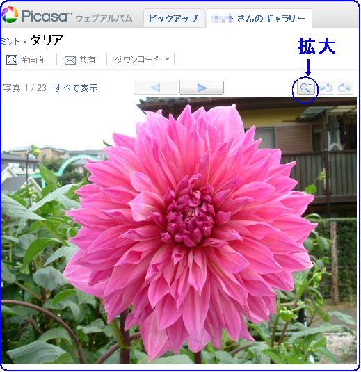 d0048312_20103724.jpg