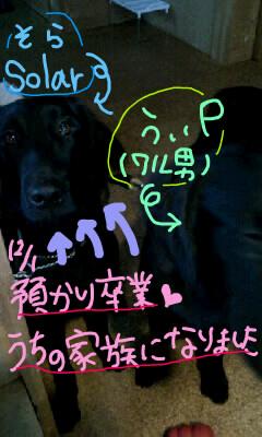 f0122951_14501517.jpg