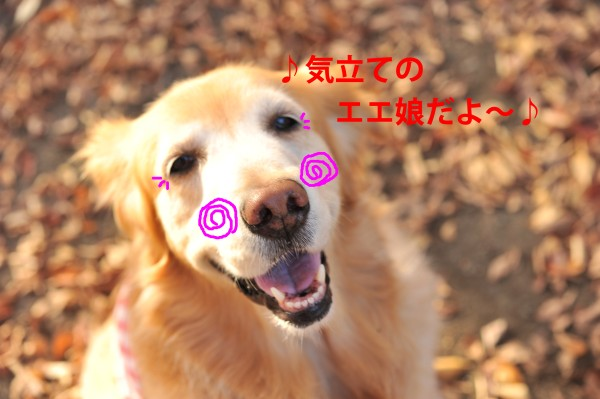e0020166_20432837.jpg