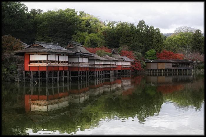 紅葉 2010 <長岡天満宮>_f0021869_0134883.jpg