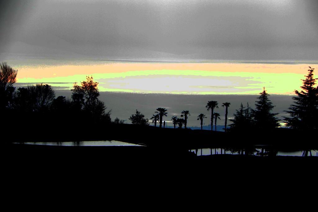 今期初撮りのカシラダカ&ホオジロ/不思議な色の空_b0024798_762826.jpg
