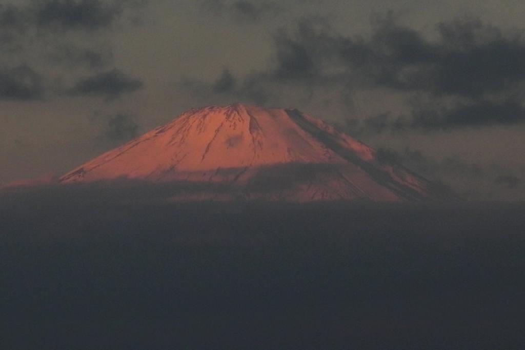 今期初撮りのカシラダカ&ホオジロ/不思議な色の空_b0024798_77432.jpg