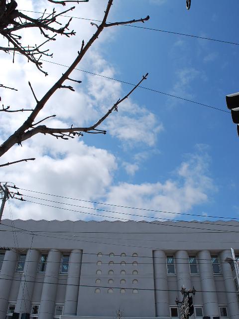 函館・百十三銀行本店(建築家・関根要太郎作品研究、その8)_f0142606_21595410.jpg