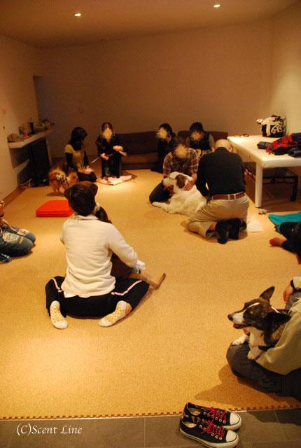 第4回「愛犬の為の整体教室」の模様 その1_c0099133_19512079.jpg