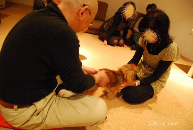 第4回「愛犬の為の整体教室」の模様 その1_c0099133_1954412.jpg