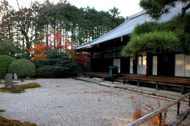相国寺 散りモミジ_e0048413_1942241.jpg