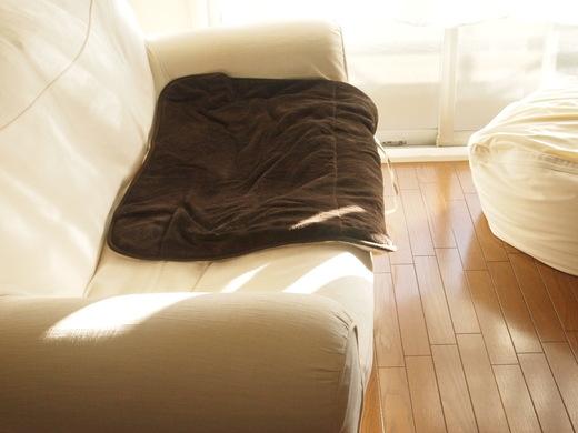ソファの上に掛けている無印のホットマットはもうしばらくそのままで。 夜はまだ少し肌寒い。
