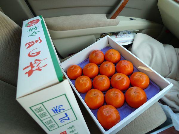 滋賀県の柿品評会_d0108737_105783.jpg